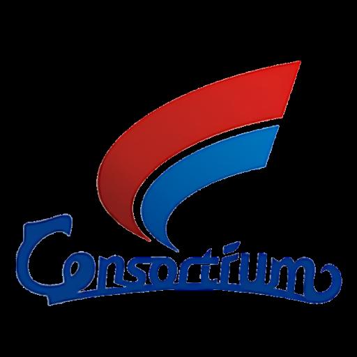 China Consulting Consortium